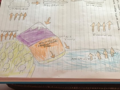 Harry the water cycle